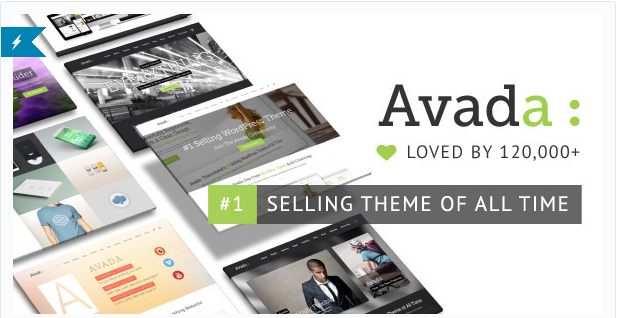 Theme Avada Professional Customization